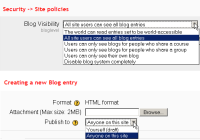 blog visibility.png
