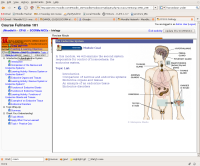 Screenshot-CF101: biology - Mozilla Firefox.png