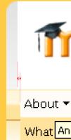 header_lines.jpg