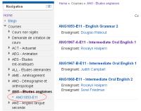 StudiUM- ANG - Études anglaises_1308324611512.png