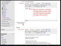 Page Resource_Bug.png