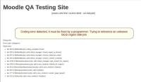 QA site error.jpg