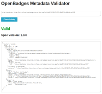 validator_result.png