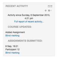 blind_marking_recent_activity_submission.png