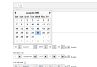popup calendar incorrect.png