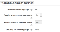 groupsubmissionsettings.png