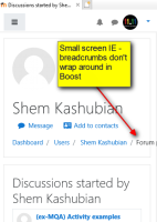 2018-11-26 , 18_38_41 - http___localhost_mod_forum_user.php_id=4&mode=discussions&theme=boost_Discussions started by Shem Kashubian - Internet Explorer.png