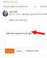 inline reply field with space around text.jpg