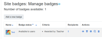 badge with manual issue criteria.png