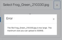 file upload error.png